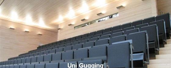 Auditorium Akustik: Gugging Akustikpaneel - Trikustik